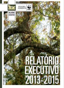 relatorio_executivo