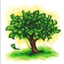 mecanismos-de-protecao-ambiental-pagamento-de-servicos-ambientais-psa