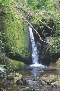 Crédito: Silvestre Silva - Cachoeira da RPPN Alto do Deco localizada no município de São José dos Campos